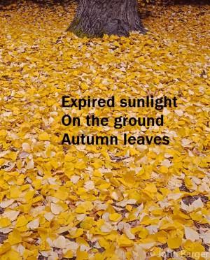 Expired sunlight